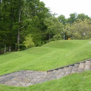 Rhinefield 2006