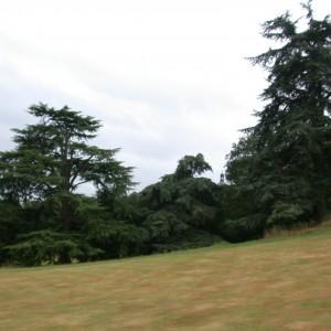 Cupola, just visible 2009