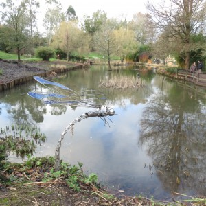The Pond at Hilliers, February 2016