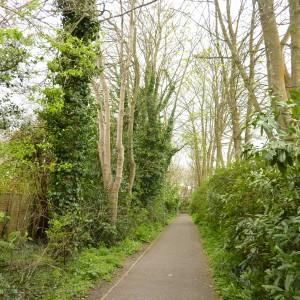 Langdown Lawn - remaining pathway leading to housing estate