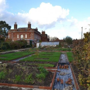 Vegetable garden looking towards the greenhouses