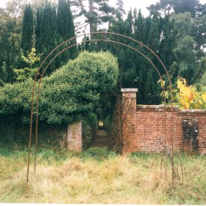 Walled garden, Irish Yews leading to entrance