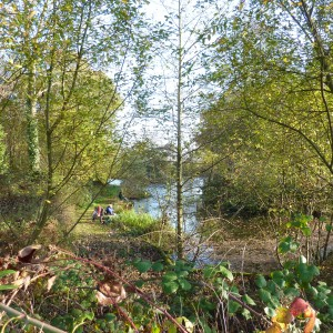 Avenue Pond