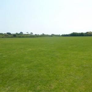 Seafield Recreation field May 2016